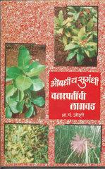 औषधी व सुगंधी वनस्पतींची लागवड