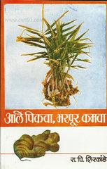 Aale Pikava, Bharpur Kamava
