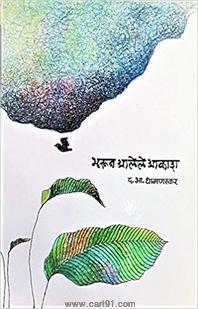 Bharun Aalele Akash