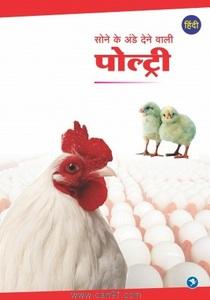 Sone Ke Ande Dene Vali Poultry