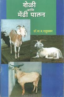 Sheli Aani Mendhi Palan