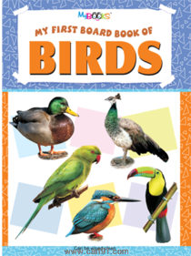 My First Board Book of Birds