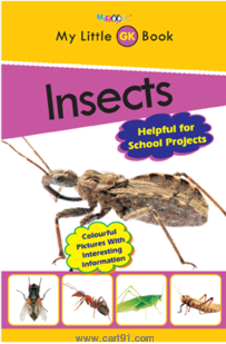 My Little General Knowledge Book -Insects