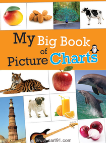 Koral Books My Big Book Of Picture Charts